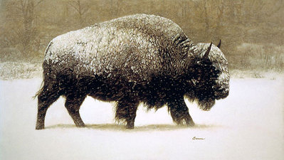 Buffalo In Storm- Signed By The Artist								 – Canvas Giclee – Limited Edition – 20 A/P – 14 x 25
