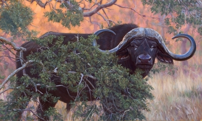 Black Gold- Signed By The Artist – CanvasGiclee  – Limited Edition  – 200S/N  –  21x35