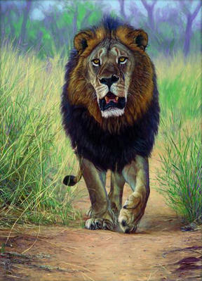Lionheart- Signed By The Artist – CanvasGiclee – Limited Edition – 175S/N – 40x29