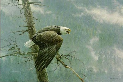 The Air, Forest And Watch – Premier Edition- Signed By The Artist – PaperLithograph – Limited Edition – 950S/N – 23x34 1/2