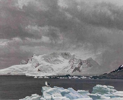 Antarctic Elements- Signed By The Artist – PaperLithograph – Limited Edition – 20P/P – 18 1/2x22 1/2