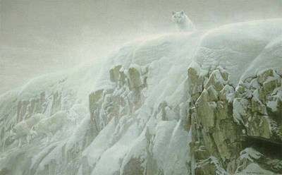 Arctic Cliff – White Wolves- Signed By The Artist – PaperLithograph – Limited Edition – 13000S/N – 20 1/4x32 1/2