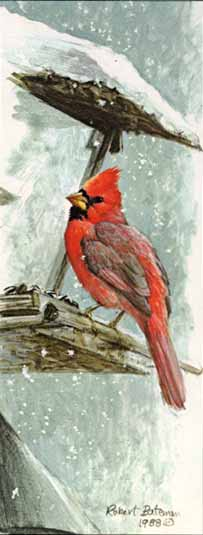 At The Feeder – Cardinal- Signed By The Artist								 – Paper Lithograph – Limited Edition – 950 S/N – 9 3/4 x 3 7/8