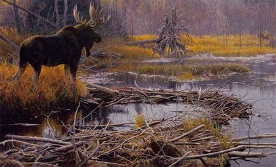 Autumn Overture – Moose- Signed By The Artist								 – Paper Lithograph – Limited Edition – 950 S/N – 19 1/2 x 31 1/4 –
