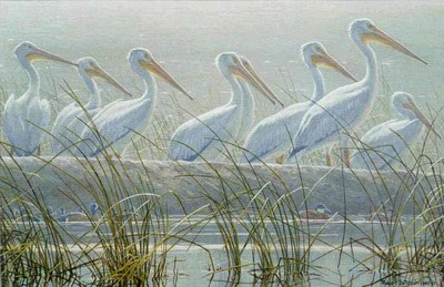 Bounty Of The Wetlands- Signed By The Artist								 – Paper Lithograph – Limited Edition – 25 S/N – 16 x 21 5/8 –