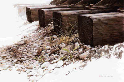 By The Tracks – Killdeer- Signed By The Artist – PaperLithograph – Limited Edition – 950S/N – 16x23
