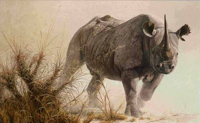 Charging Rhino- Signed By The Artist – PaperLithograph – Limited Edition – 950S/N – 20x32 1/2