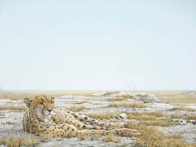 Cheetah Siesta- Signed By The Artist								 – Paper Lithograph – Limited Edition – 950 S/N – 27 1/2 x 34 1/4 –