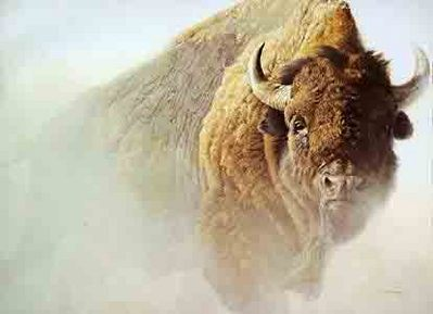 Chief – American Bison- Signed By The Artist – CanvasLithograph – Limited Edition – 180S/N – 25x34