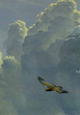 Flying High – Golden Eagle- Signed By The Artist – PaperLithograph – Limited Edition – 950S/N – 27x18 3/4