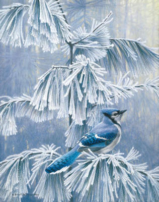 Frosty Morning – Blue Jay- Signed By The Artist – PaperLithograph – Limited Edition – 950S/N – 19 1/4x15 1/4