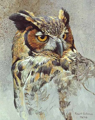 Great Horned Owl Study- Signed By The Artist								 – Paper Lithograph – Limited Edition – 950 S/N – 9 3/4 x 7 3/4