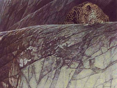 Leopard Ambush- Signed By The Artist – PaperLithograph – Limited Edition – 950S/N – 20x27 1/2