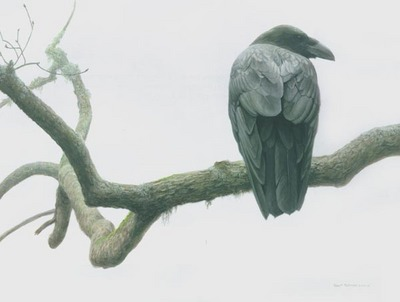 Lone Raven- Signed By The Artist – CanvasGiclee – Limited Edition – 25A/P – 26x35
