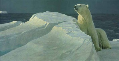 Long Light – Polar Bear- Signed By The Artist – CanvasLithograph – Limited Edition – 180S/N – 18x37