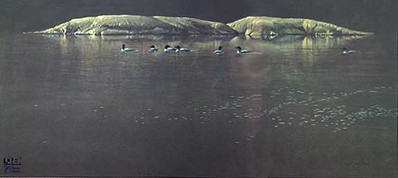Loon Gathering At Big East- Signed By The Artist – CanvasGiclee – Limited Edition – 18A/P – 20x40