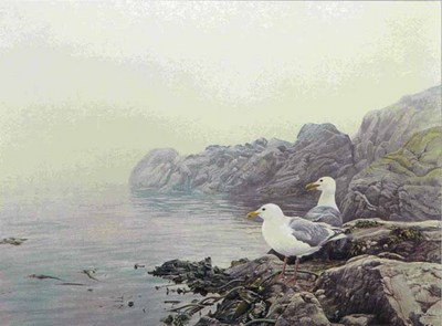 Misty Coast – Gulls- Signed By The Artist – PaperLithograph – Limited Edition – 950S/N – 24 1/8x17 7/8