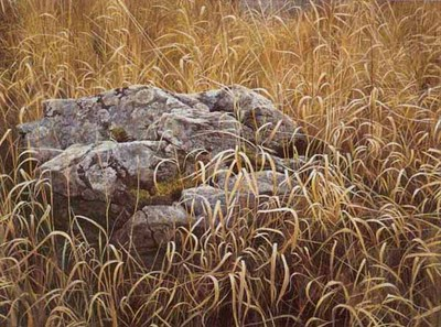 Near Glenburnie- Signed By The Artist – PaperLithograph – Limited Edition – 950S/N – 19 1/2x26 3/8