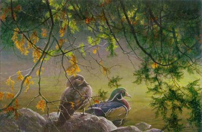 On The Pond – Wood Ducks- Signed By The Artist								 – Canvas Lithograph – Limited Edition – 76 A/P – 16 x 24