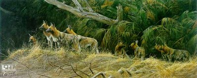 Painted Dogs- Signed By The Artist – CanvasLithograph – Limited Edition – 180S/N – 20x48