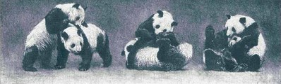 Pandas At Play- Signed By The Artist – PaperLithograph – Limited Edition – 160S/N – 5 7/8x18 –