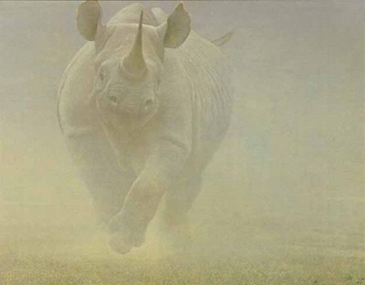 Power Play – Rhinoceros- Signed By The Artist – PaperLithograph – Limited Edition – 950S/N – 19 1/2x26 –