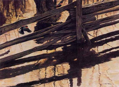 Red-Winged Blackbird And Rail Fence- Signed By The Artist – PaperLithograph – Limited Edition – 56A/P – 18 1/4x25