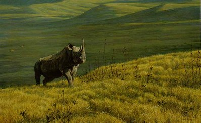 Rhino At Ngoro, Ngoro- Signed By The Artist – PaperLithograph – Limited Edition – 950S/N – 20x32