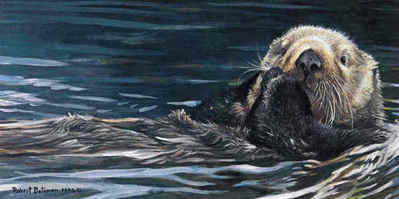 Sea Otter Study- Signed By The Artist – PaperLithograph – Limited Edition – 950S/N – 7 5/8x15 3/8