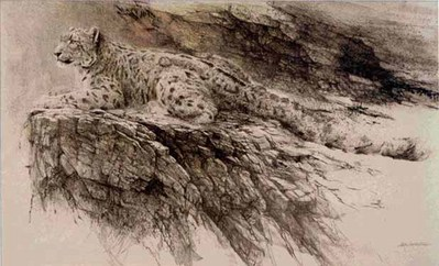 Snow Leopard- Signed By The Artist – PaperLithograph – Limited Edition – A/P – 23 1/4x40