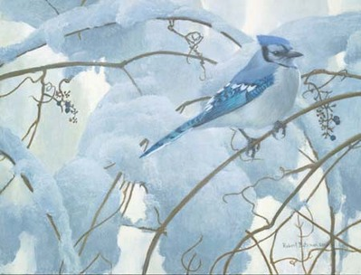 Snowy Morning – Blue Jay- Signed By The Artist								 – Paper Lithograph – Limited Edition – 76 A/P – 8 1/2 x 11 1/4 –