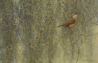 Song Of The South – Carolina Wren- Signed By The Artist								 – Canvas Lithograph – Limited Edition – 350 S/N – 12 x 18