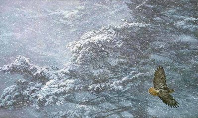 Sudden Blizzard – Red-Tailed Hawk- Signed By The Artist								 – Paper Lithograph – Limited Edition – 950 S/N – 20 x 33 1/2 –