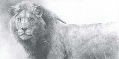 The Warrior- Signed By The Artist – CanvasGiclee – Limited Edition – 40A/P – 20x40