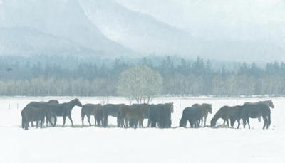 Winter Gathering – Horse Herd- Signed By The Artist								 – Canvas Giclee – Limited Edition – 350 S/N – 23 x 40