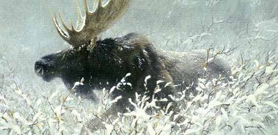 Winter Run – Bull Moose- Signed By The Artist – PaperLithograph – Limited Edition – 1950S/N – 16 1/4x32 1/2