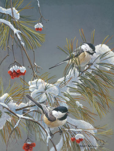 Winter Song – Chickadees- Signed By The Artist – PaperLithograph – Limited Edition – 950S/N – 12 3/4x9 1/2