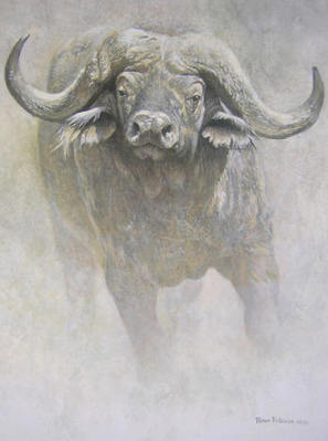 African Buffalo – Sappi Portfolio- Signed By The Artist								 – Paper Lithograph – Limited Edition – 550 S/N – 20 x 16 3/4
