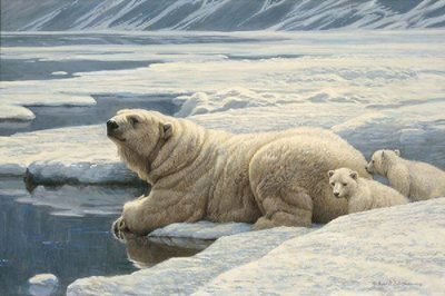 Arctic Family – Polar Bears- Signed By The Artist – CanvasGiclee – Limited Edition – 180S/N – 20x30