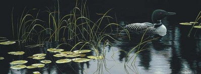 Lily Pads And Loons- Signed By The Artist – CanvasGiclee – Limited Edition – 180S/N – 15x40