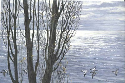 Poplar Trees And Buffleheads- Signed By The Artist – PaperLithograph – Limited Edition – 20P/P – 7 7/8x11 5/8