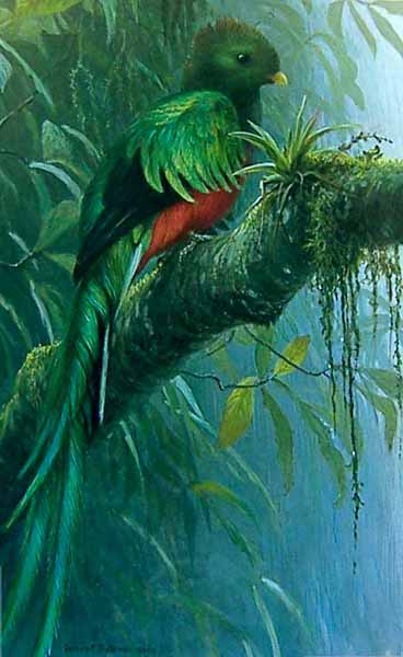 Quetzal- Signed By The Artist								 – Paper Lithograph – Limited Edition – 40 A/P – 22 x 15 5/8