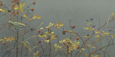 Rose Hip And Kinglet- Signed By The Artist – CanvasGiclee – Limited Edition – 40A/P – 10x20