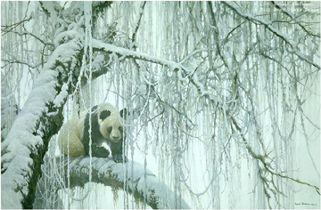 Winter Filigree – Giant Panda- Signed By The Artist – PaperLithograph – Limited Edition – 9600S/N – 20 1/2x30 3/4