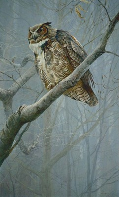Winter Mist – Great Horned Owl- Signed By The Artist – CanvasGiclee – Limited Edition – 180S/N – 38x23