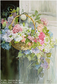Hanging Hydrangeas- Signed By The Artist – PaperLithograph  – Limited Edition  – 76A/P  –  19 5/8x13 1/8