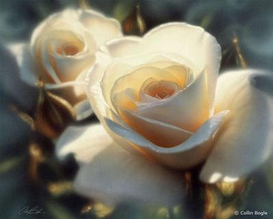 Colors Of White- Signed By The Artist – CanvasGiclee – Limited Edition – A/P – 17 1/2x14