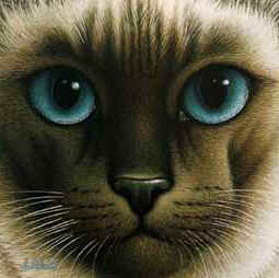 Chocolate Point Siamese- Signed By The Artist – PaperLithograph – Limited Edition – 175S/N – 8x8 –