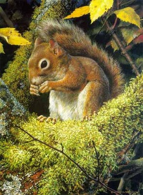 Acrobat's Meal – Red Squirrel- Signed By The Artist								 – Paper Lithograph – Limited Edition – 950 S/N – 11 x 8 1/4
