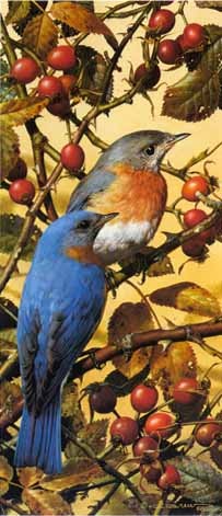 Bluebirds- Signed By The Artist – PaperLithograph – Limited Edition – 950S/N – 12 1/2x5 1/2